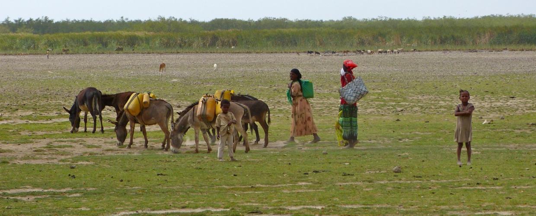 Ethiopie-scolarisation-8
